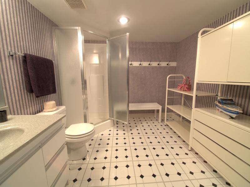 interesting finish basement bathroom doors soul kitchen 60 Bathroom Mirror and Lighting 60 Bathroom Mirror and Lighting